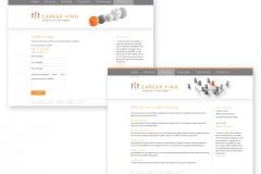web_CareerFind_2